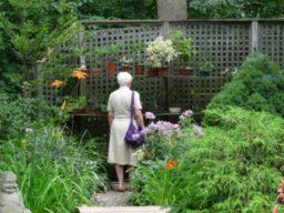 Garden Social, Host Salve Desprez, July 2016