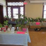 BGC Plant Sale May 2016
