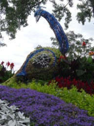Dorval Topiary Walk Sep 2019